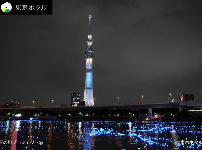 tokyo_hotaru